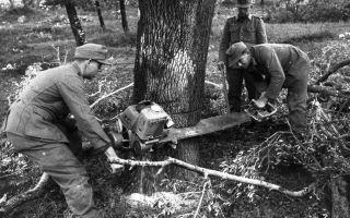 Самая первая бензопила в мире. радость лесорубов