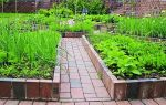 Чем засыпать дорожки между грядками чтобы не росла трава: материал для дорожек