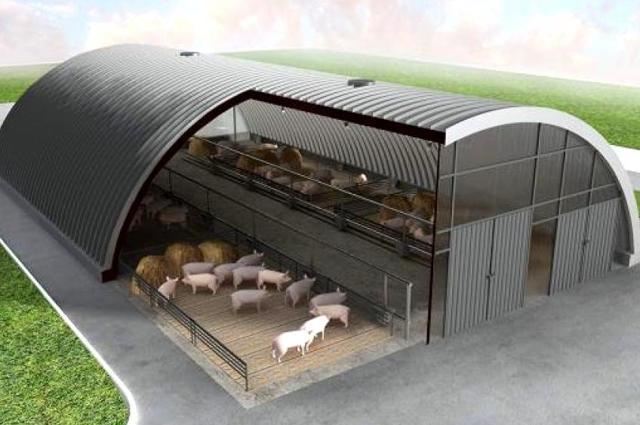 Строительство свинарника своими руками: виды, чертежи, материалы, пошаговая инструкция